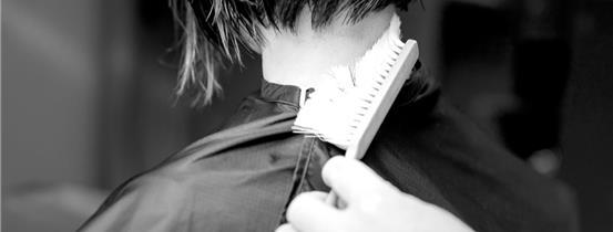Neck Brush