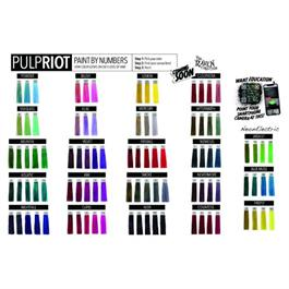 Pulp Riot Paint by Numbers Shade Card thumbnail