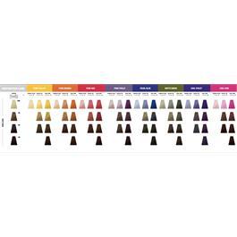 Pure Pigments Shade Guide thumbnail