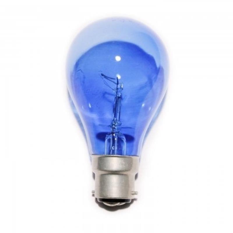 Natural Blue Bulb  Image 1